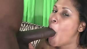 bbw big black cock big cock